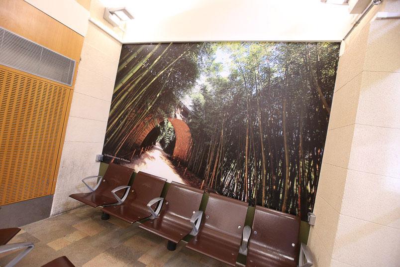 Gare SNCF de nimes décoration des murs de salles d'attente - photo bambouseraie